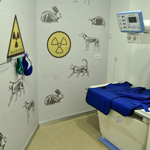Sala de radiodiagnóstico - Clínica veterinaria Jardín de la Reina