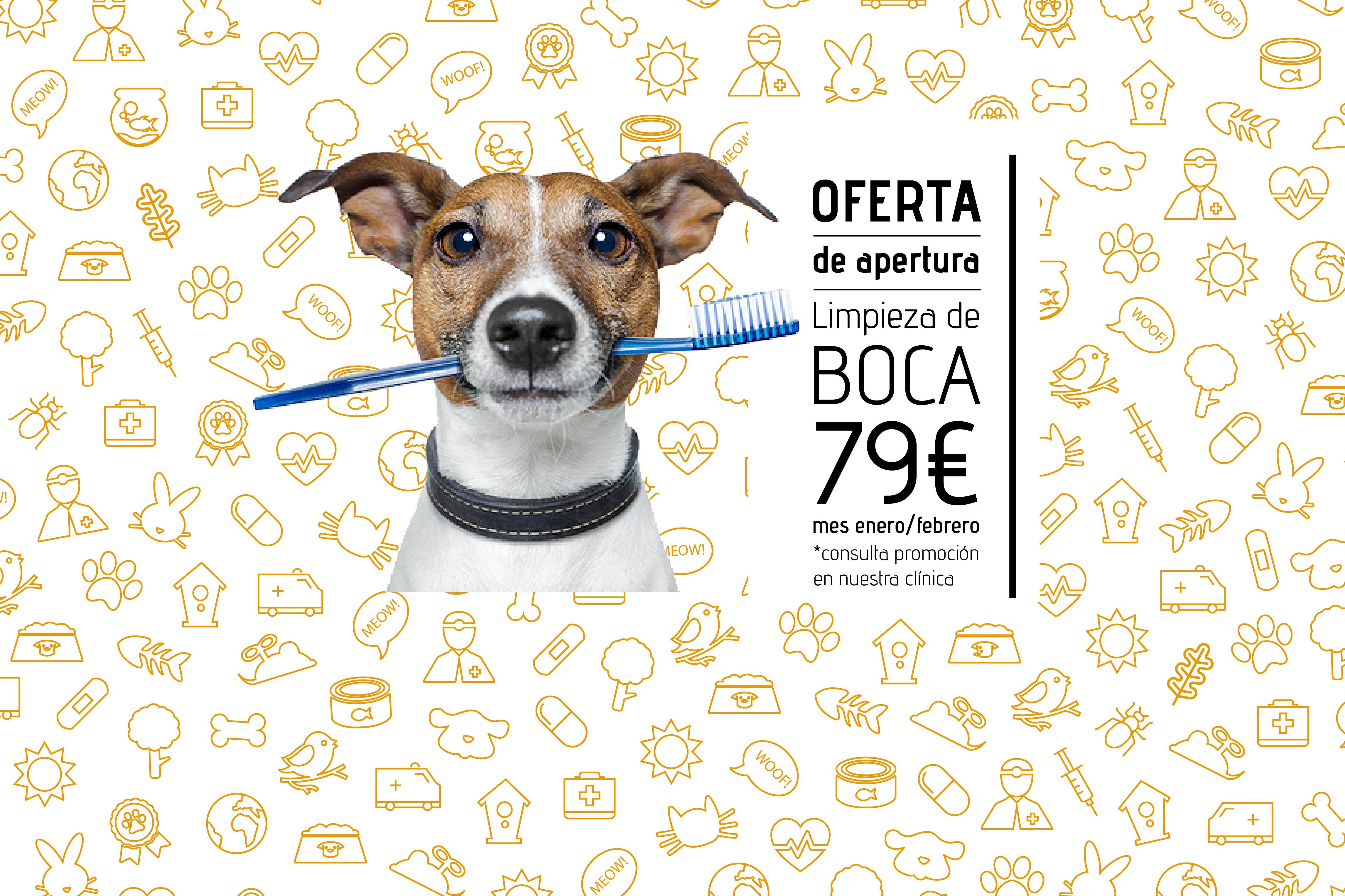 Oferta apertura LIMPIEZA DE BOCA A 79€